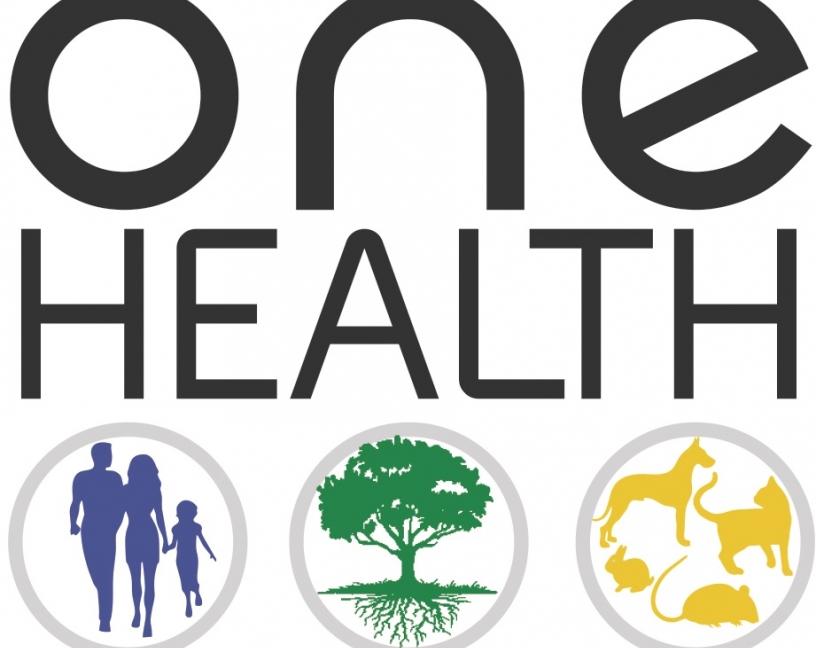 One Health