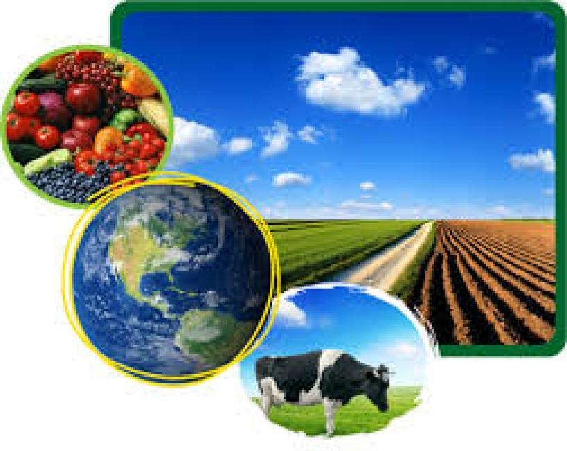 Nuevas normas sobre los controles oficiales en la cadena agroalimentaria