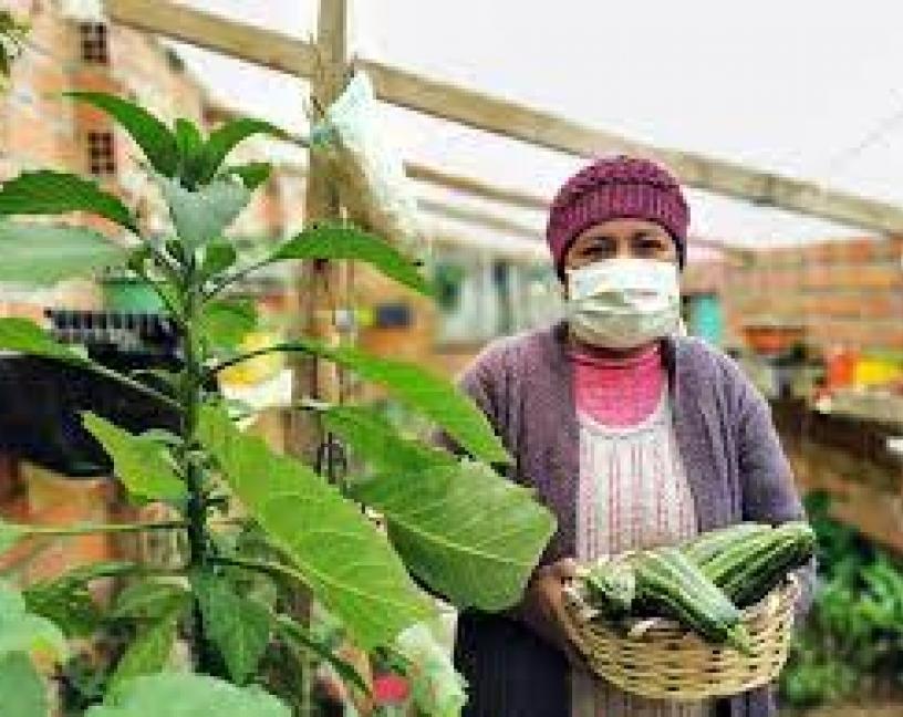 Covid-19 en la industria alimentaria, la FAO actualiza su guia para prevenir la transmisión