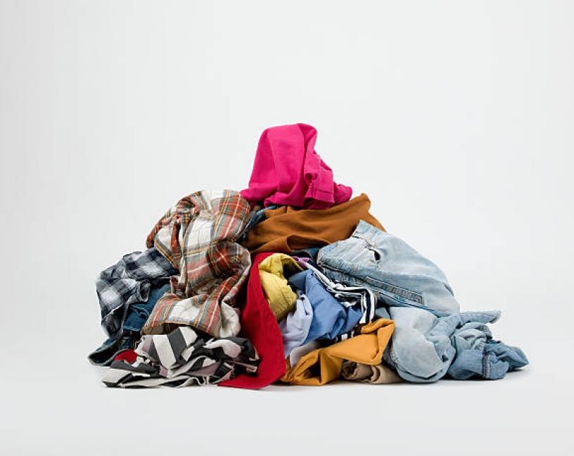 La ropa sucia de los viajeros contribuye a la expansión de las chinches de la cama
