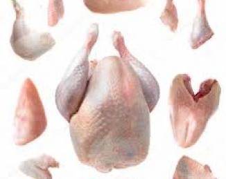 Cuidado con el pollo crudo y su eventual condimento bacteriano con Campylobacter