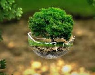 Qué es la  Higiene ambiental