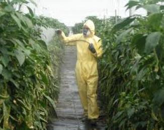 Residuos de pesticidas