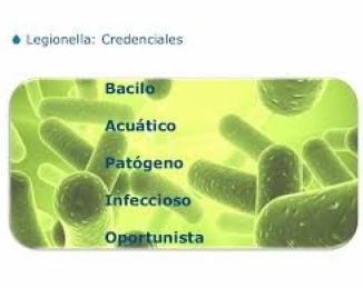 El cambio climático favorece la propagación de la Legionella