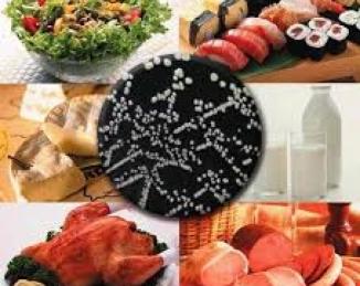 Microbiologia de la cadena alimentaria: nuevas normas UNE