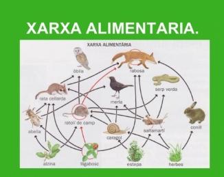 XIA, la xarxa de referència en innovació alimentària a Catalunya
