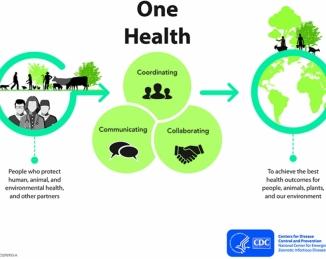 Una sola salud une humanos, animales y ecosistemas